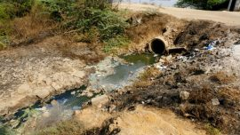 Big Pharma Pressured to Clean Up Pollution That Creates Superbugs