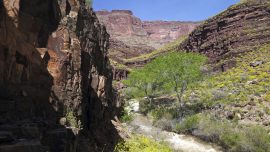 Drones search Grand Canyon for missing hikers