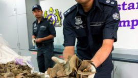 Malaysia seizes nearly $1 million in trafficked wildlife at airport