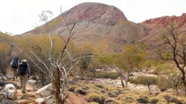 Woman Rescued After 12 Nights Stranded in Outback; 2 Missing