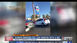 Woman Smashes Windshield with Bat in Las Vegas Road Rage Incident