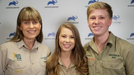 Bindi Irwin, Daughter of 'Crocodile Hunter' Announces Engagement With 6 Year Conservationist Boyfriend