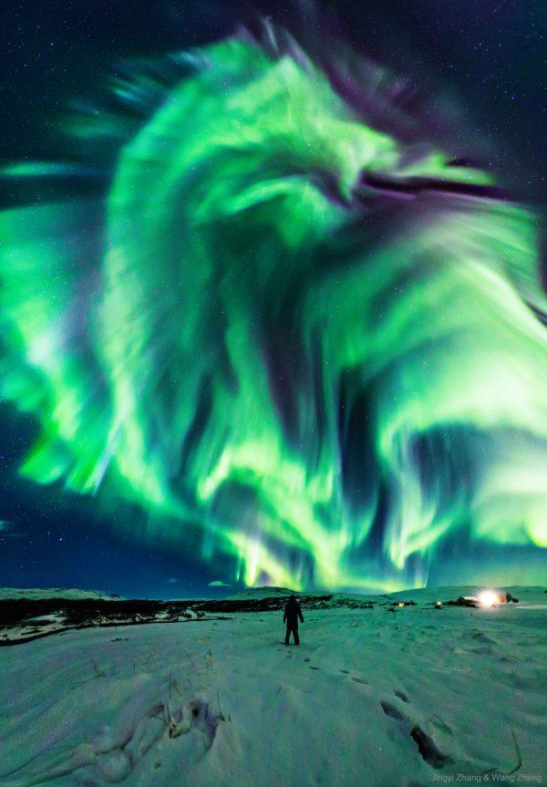 a dragon aurora