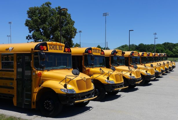 school busses at a parking lot