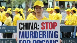 Experts Call on UN to Investigate China's Killing of Religious Dissidents for Their Organs