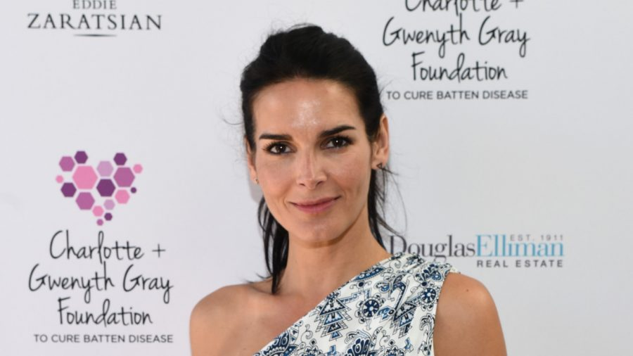 Actress Angie Harmon Got Engaged for Christmas