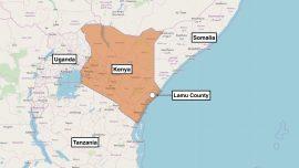 US Military Says It Killed Terrorist Leader Who Plotted Kenya Attack