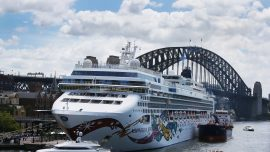 With Over 30 Cruise Ships Stuck at Sea, Passengers Try to Stay Positive