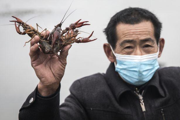 Crayfish farmer