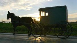 Horse-Drawn Buggy Accident in Kentucky Kills 4 Children, 1 Still Missing