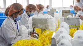 Report: Stockpile of 39 Million Masks Exposed as Fake