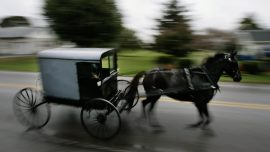 Missing Child From Kentucky Horse-Drawn Buggy Accident That Killed 4 Found Dead