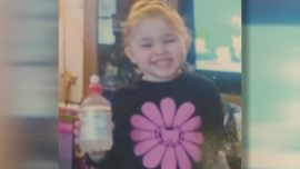 New Details Emerge in Case of 3-Year-Old Olivia Jansen