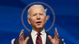 Poll: 96 Percent of Democrats Say Biden Elected Fairly, Majority of Republicans Disagree