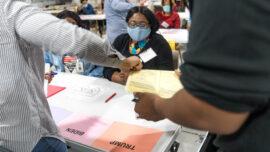 Georgia Senate Committees to Hold Election Hearings