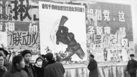 Features of China's Cultural Revolution