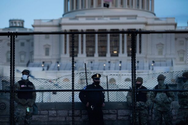 A Capitol Police officer stands with members