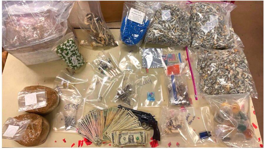 Man Arrested Over DMT Lab, Drug Bust Nets Over $1 Million in 'Dangerous Narcotics'