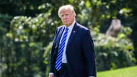 Expert: Trump's Sex Trafficking Policies Help