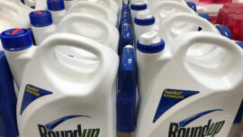 US Judge Rejects Bayer's $2 Billion Deal to Resolve Future Roundup Lawsuits as 'Unreasonable'