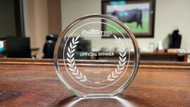 Epoch Times Wins Best Documentary Award at CONTENT Film Festival