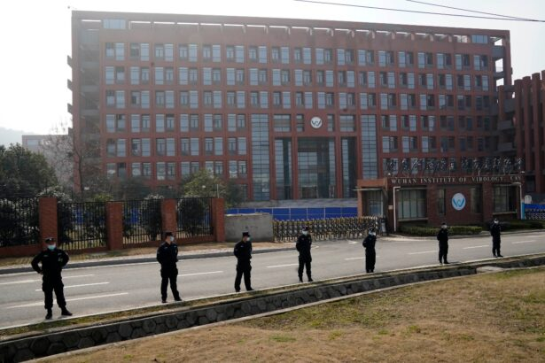 security-wuhan-lab