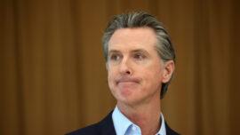 The Californians: The Newsom Recall, Brah