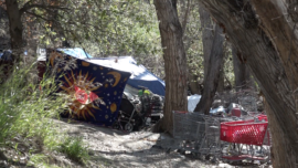Homeless Camps Cleared for Trail Safety