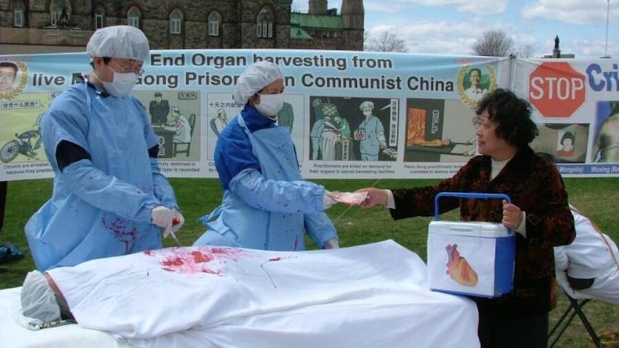 UN Human Rights Experts 'Extremely Alarmed' by Forced Organ Harvesting Allegations in China