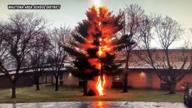 Video Shows Lightning Shatter a Tree Outside of a Wisconsin High School