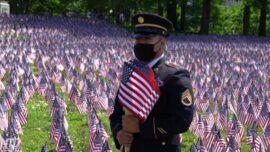 Massachusetts Memorial Day Flag Garden