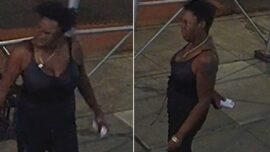 Woman Attacks Two People With Hammer in NYC