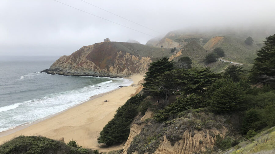 Man Hospitalized in Serious Condition After Shark Bite in Northern California