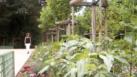 Marie Antoinette's Garden Restored