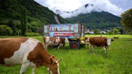 Switzerland Votes on Banning Pesticides