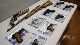 California Officials Aim to Reverse Gun Ruling