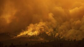 Fires Rage in Several States As Heat Wave Broils US West