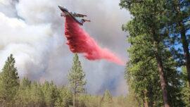 Western Wildfires: California Blaze Crosses Into Nevada
