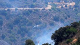 Cyprus Faces Its 'Most Destructive' Forest Fire Ever; 4 Dead