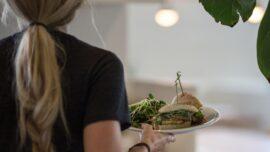 Berkeley California to Provide Vegan Options