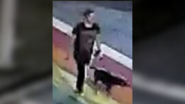 Woman Walking Her Dog in Atlanta Park Stabbed to Death