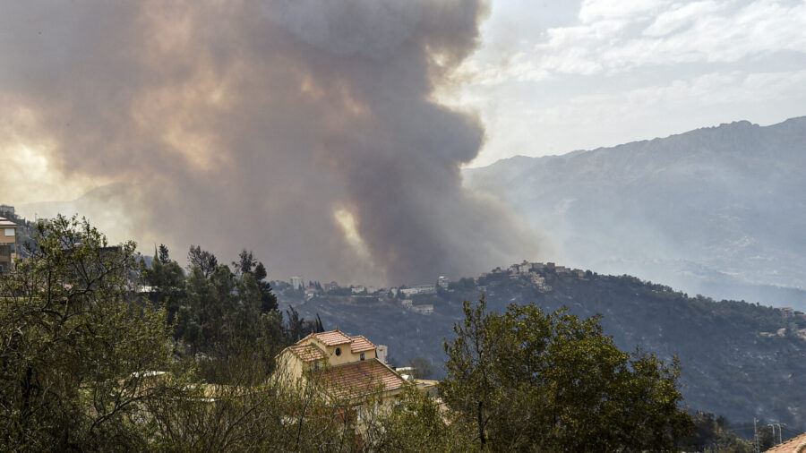 Death Toll up to 65 in Algeria Wildfires; Nation to Mourn
