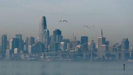 Landlords Sue San Francisco Over Rent Relief Bill
