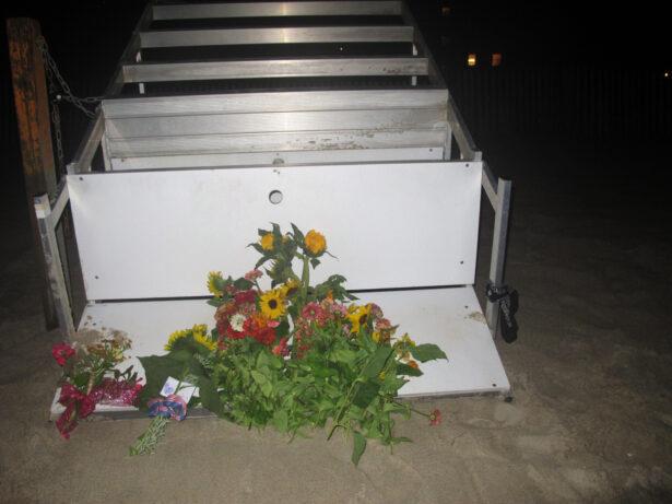 Lightning Lifeguard Killed