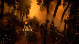 Massive Forest Fire in Greece Still Burning for 7th Day
