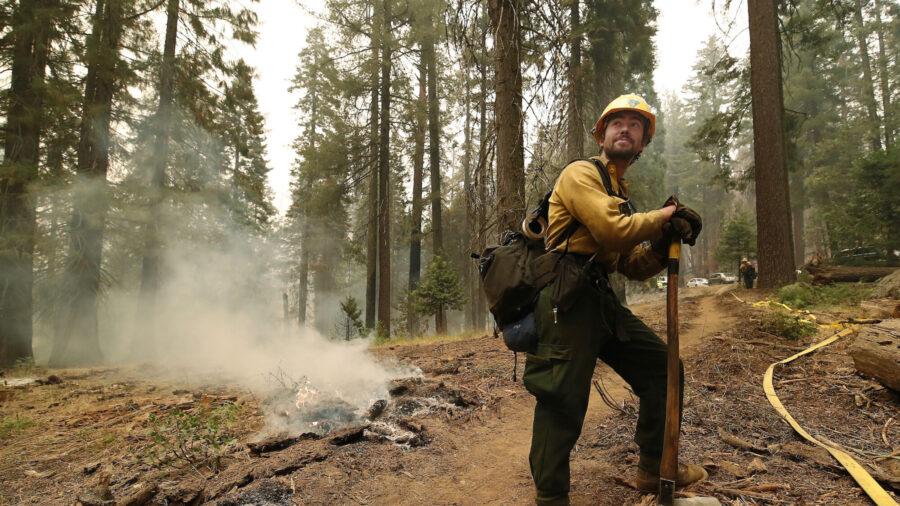 Woman Arrested on Suspicion of Starting California Blaze