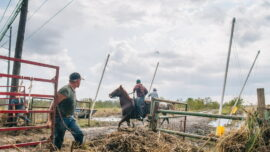 Louisiana Locals Help Each Other After Ida