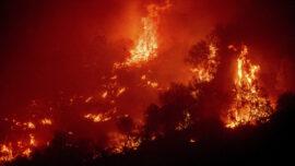 California Wildfires Threaten Old-Growth Sequoias in Sierra Nevada