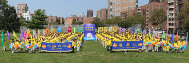New York practitioners