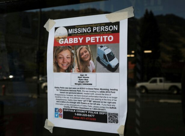 poster for Gabby Petito